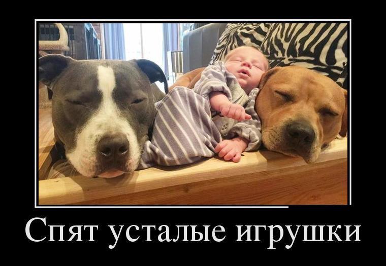 Надписью, спят усталые игрушки картинки прикольные