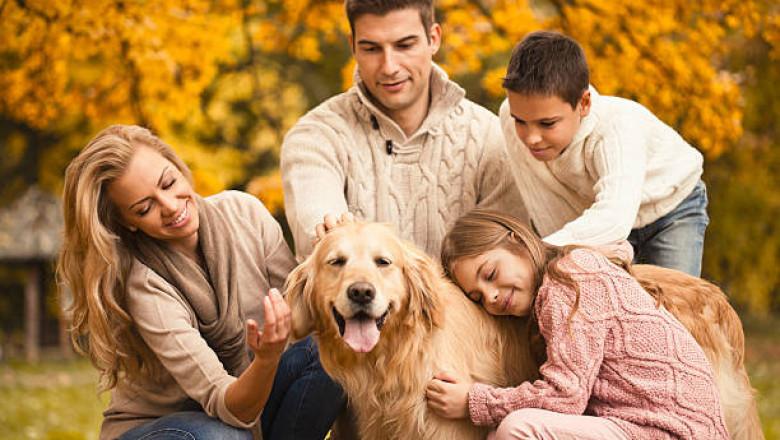 Семья и пес картинки